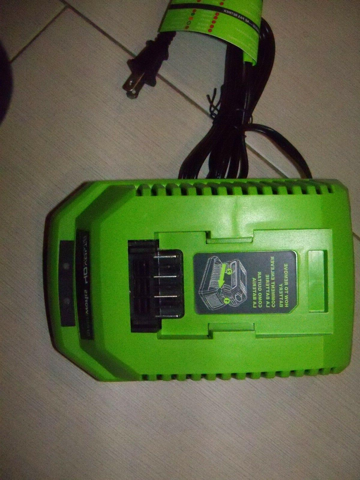 GREENWORKS Series 40V Lithium-Ion Battery FREE SHIP